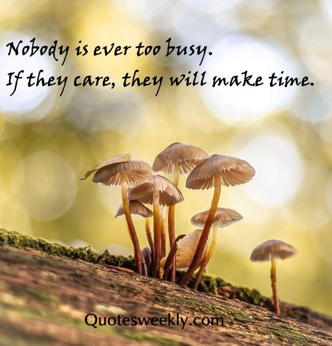 don t care quotes and sayings