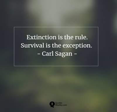 Survival quotes