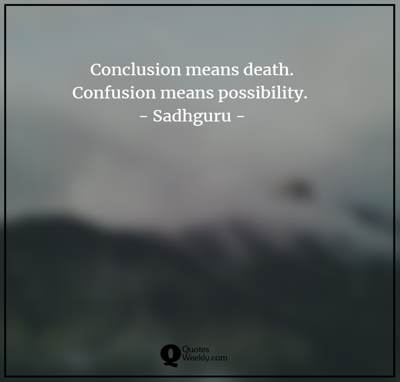 confusion quotes